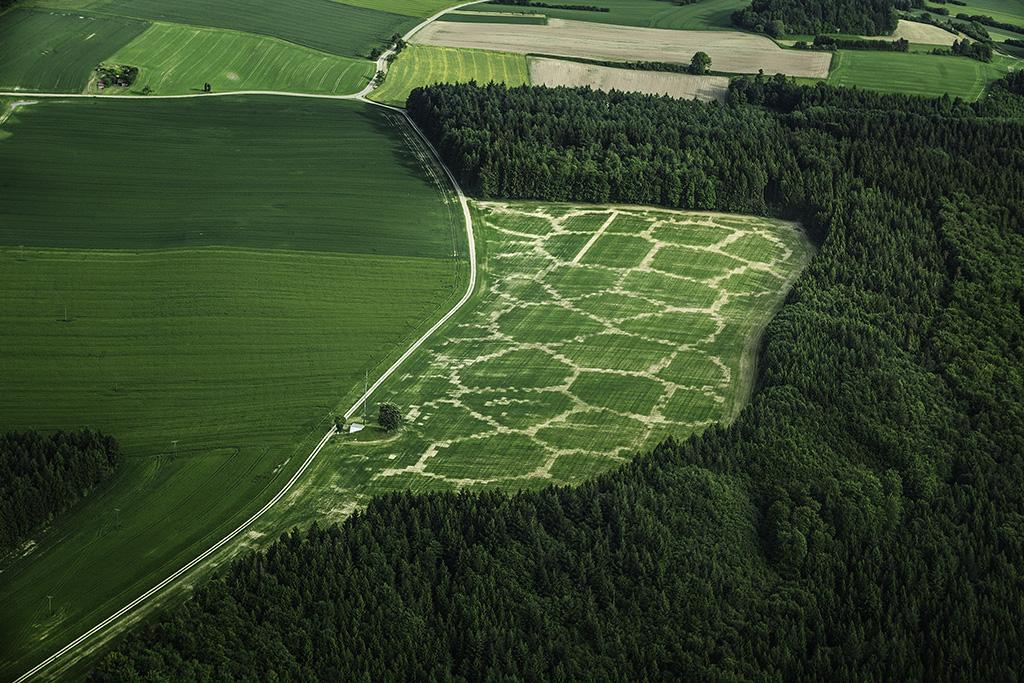 Avena+ Test Bed — Agricultural Printing and Altered Landscapes